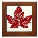 Cool Maple Leaf Souvenirs Canada Framed Tile