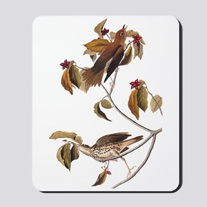Wood Thrush Birds Vintage Audubon Mousepad