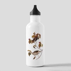 Wood Thrush Birds Vintage Audubon Water Bottle