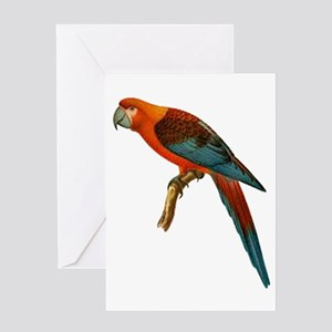 PERCHED Greeting Cards