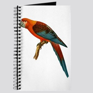 PERCHED Journal