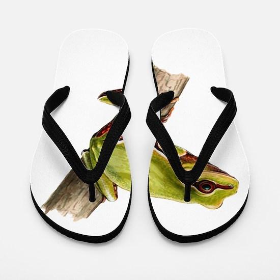 ALERT Flip Flops