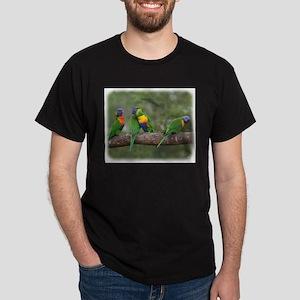 Rainbow Lorikeets 9Y543D-002 T-Shirt