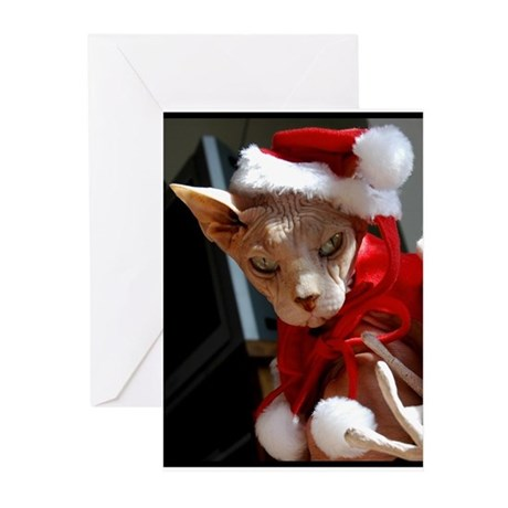 xmas_cat Greeting Cards