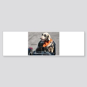Easy Rider Bumper Sticker