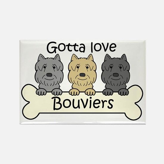 Cute Flandres Rectangle Magnet