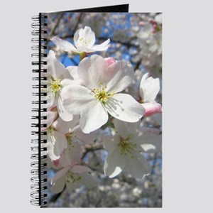 Cherry Blossom Blush Journal