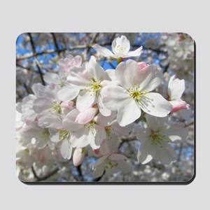 Cherry Blossom Blush Mousepad
