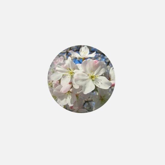 Cherry Blossom Blush Mini Button