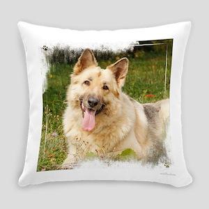 Terra 2016 Everyday Pillow