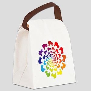 rainbow circle skate Canvas Lunch Bag