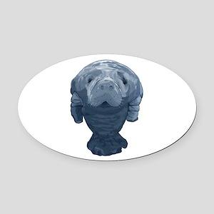 CURIOUS Oval Car Magnet