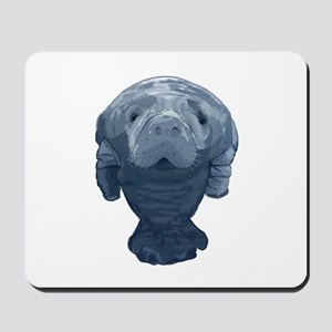 CURIOUS Mousepad