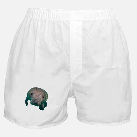 CURIOUS Boxer Shorts