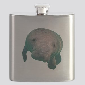 CURIOUS Flask