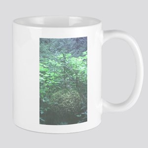 Lily of the Field Mugs