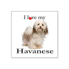 Love My Havanese Sticker