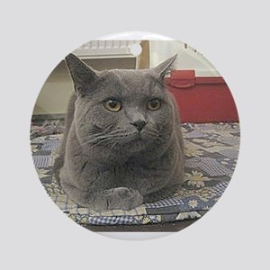 british shorthair gray Round Ornament
