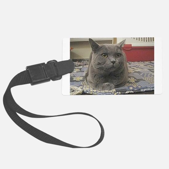 british shorthair gray Luggage Tag