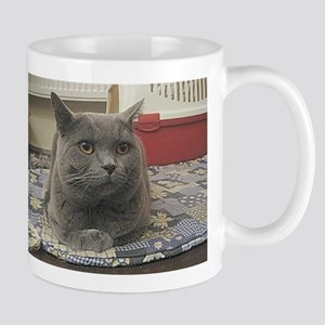 british shorthair gray Mugs