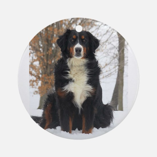Berner in Snow Round Ornament