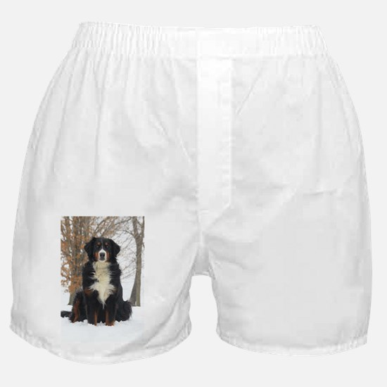 Berner in Snow Boxer Shorts
