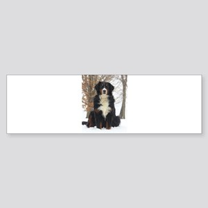 Berner in Snow Bumper Sticker