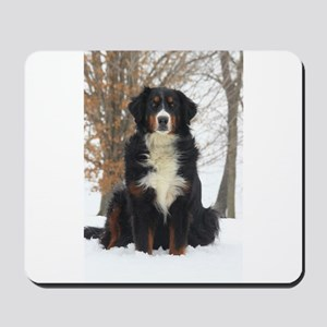 Berner in Snow Mousepad