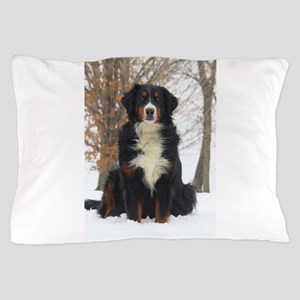 Berner in Snow Pillow Case