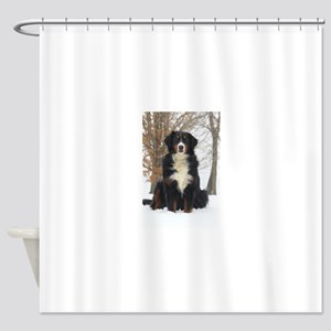 Berner in Snow Shower Curtain