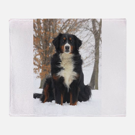 Berner in Snow Throw Blanket