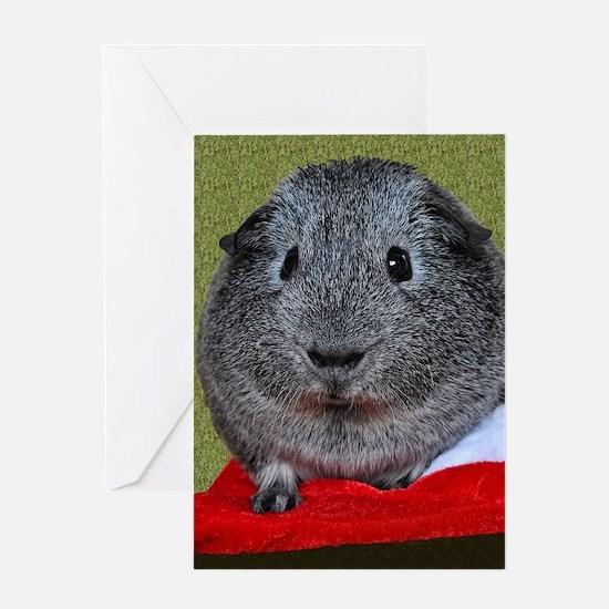 Guinea Pig Christmas Greeting Cards