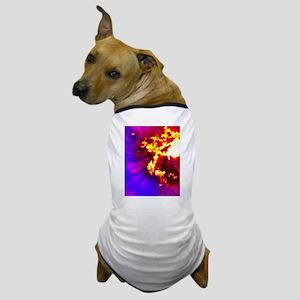 Palm Tree Sunburst Dog T-Shirt
