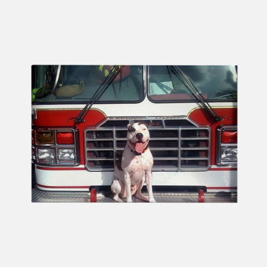 Pit Bull T-Bone Fire House Dog Magnets