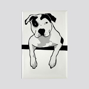 Pit Bull T-Bone Graphic Magnets