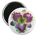 Lavender w/ Gold Daylily Magnet