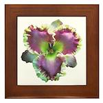 Lavender w/ Gold Daylily Framed Tile