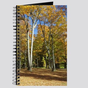 Autumn Trees Journal