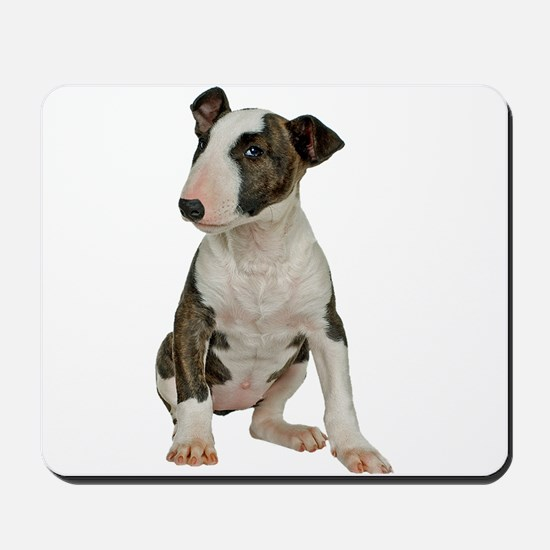 Bull Terrier Photo Mousepad