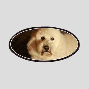 flufy white dog at night Patch