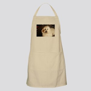 flufy white dog at night Apron