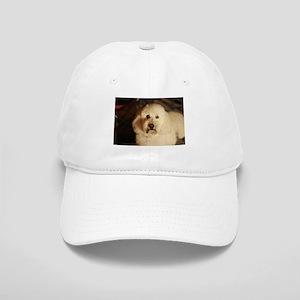 flufy white dog at night Cap