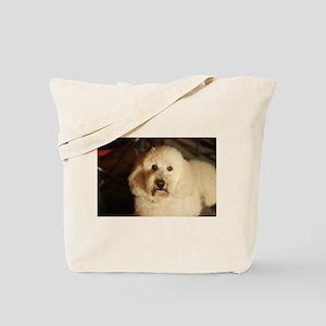 flufy white dog at night Tote Bag