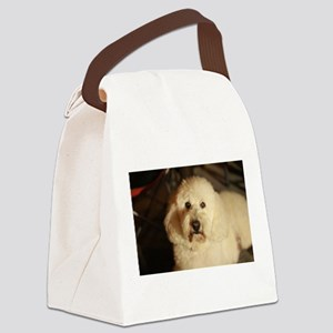 flufy white dog at night Canvas Lunch Bag