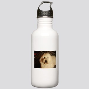 flufy white dog at nig Stainless Water Bottle 1.0L