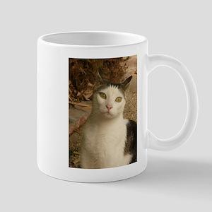 cat has green wywa Mugs