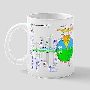 Nucleosome01 Mugs