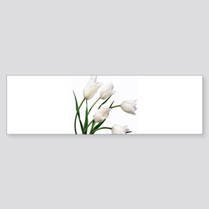 Snow White Tulip Flowers Bumper Sticker