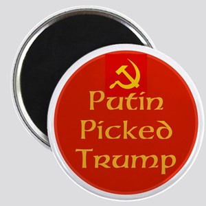 Putin picked Trump, not Americans Magnets