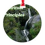 spiritual-principles Ornament